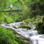 Berghotel Mühle Fallanlage romatischer Wildbach